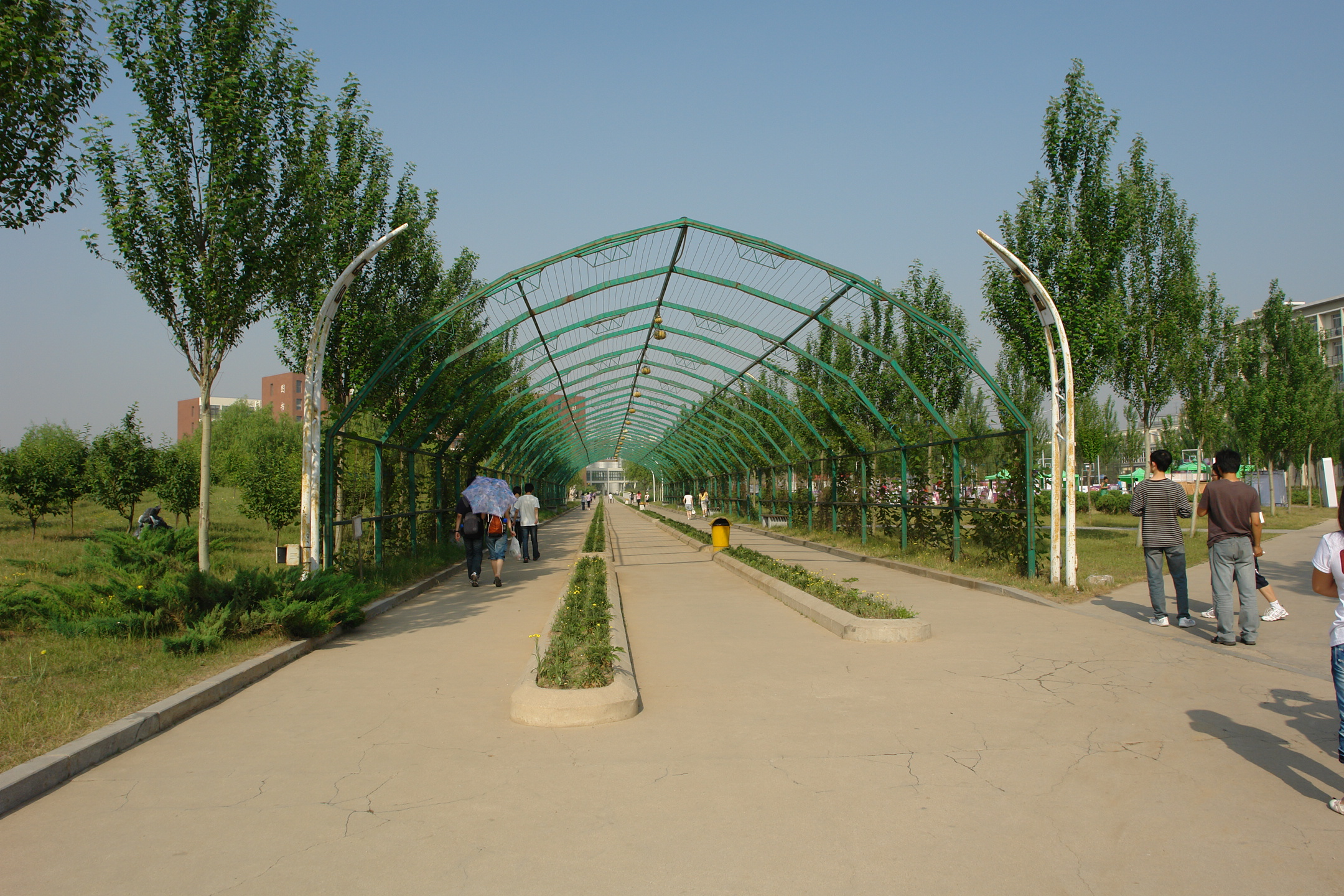 校园生态建筑景观_沈阳建筑大学校园景观文化——生态长廊